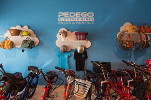 Conejo_Blog_Cycling_Pedego101.2